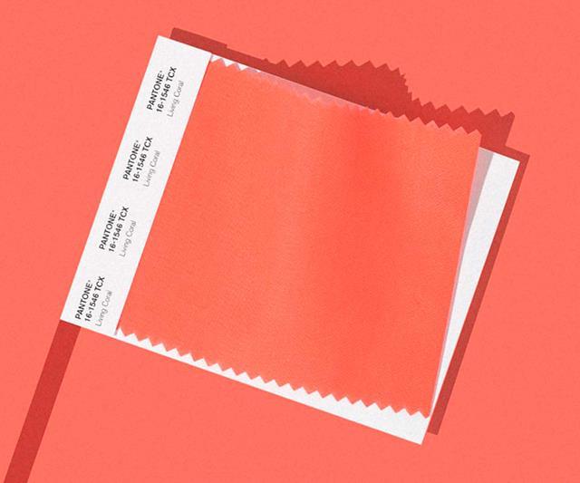 6a60b880536796 Kolor roku 2019 wg Pantone: LIVING CORAL - HOP Design